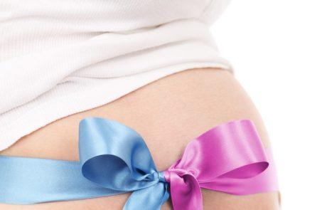 היערכות ההורים המיועדים לקראת הלידה המתוכננת באמצעות הליך פונדקאות