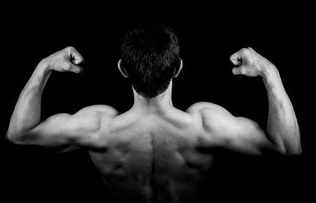 איך תעלו את מסת השריר בעזרת שייק חלבונים