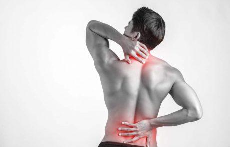 סובלים מכאבי שרירים כרוניים? סיבידי יכול לעזור לכם
