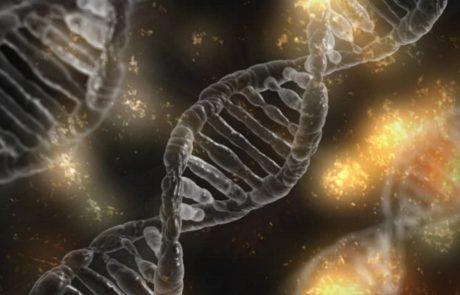 "Genooxהישראלית ו-Bionanoבשת""פ לפתרון אחד האתגרים הגדולים בניתוח מידע גנטי מבוסס NGS"