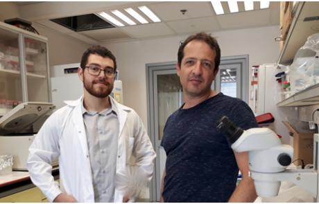 """פיתוח מסעיר במחקר חדשני בסרטן: """"מתג"""" המפעיל את המערכת החיסונית לתקוף תאים סרטניים כאשר הוא מזהה סימנים של המחלה"""